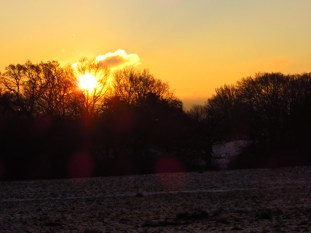 Sunrise on Tumulus Field