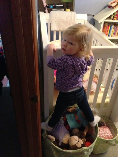 Determined Climber