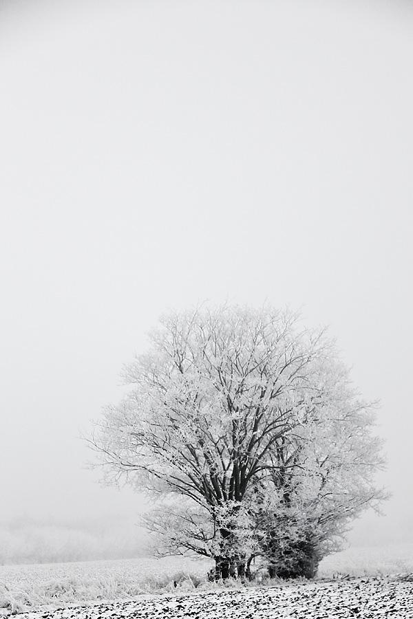Vinterdag-3