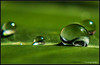 U may find the depth of an Ocean and vastness of the Sky inside a drop of Rain....! by Mysmile Photography