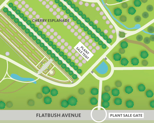 Image showing Plant Sale area and entrance.
