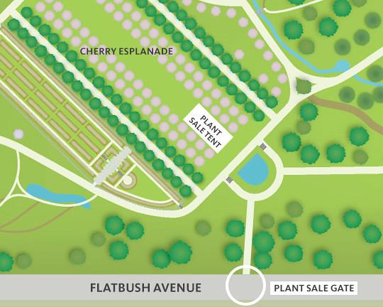 Plant Sale gate