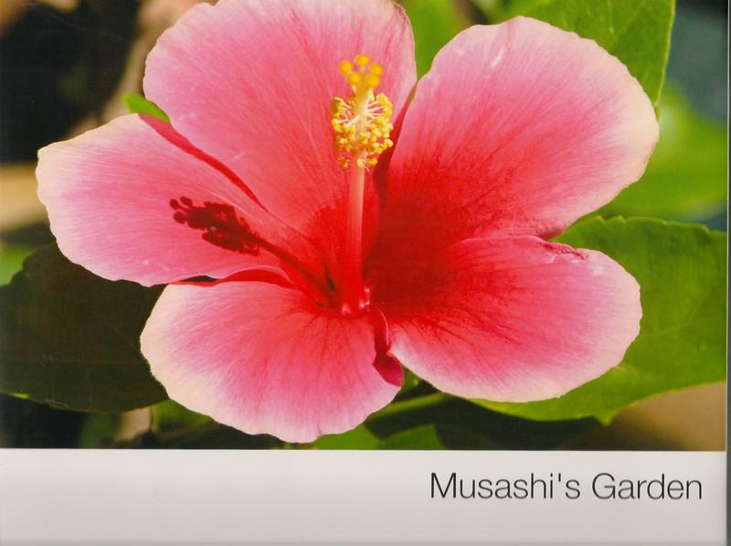 Book Cover, Musashi's Garden