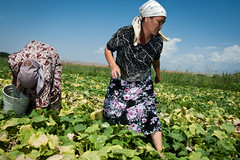 Poverty-Environment witnesses from Kyrgyzstan