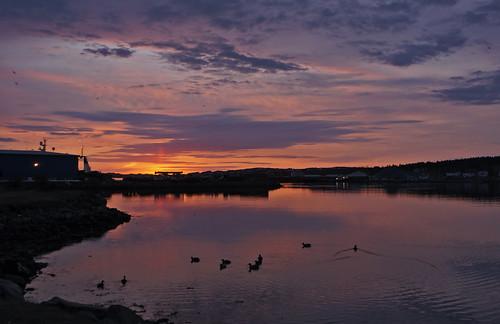 sunrise march redsky bayroberts newfoundlandandlabrador