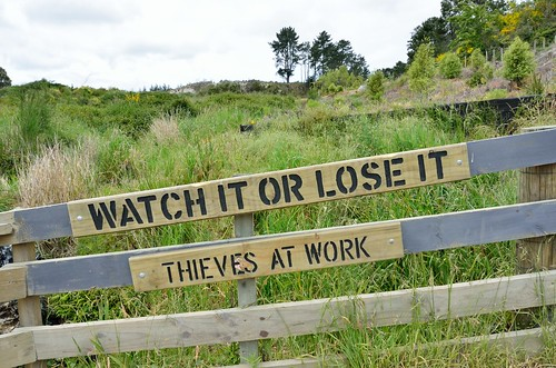 Watch it or lose it -  thieves at work. by kewl