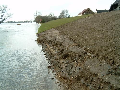 Dr Alex Rollrasen am Elbedeich Gallin bei Hochwasser
