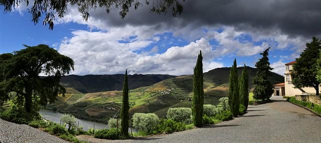 Sandeman estate - Quinta do Seixo