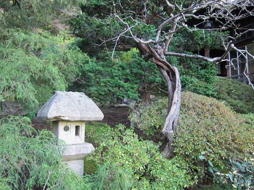 Hakone Japanese Gardens, Saratoga, CA IMG_2427