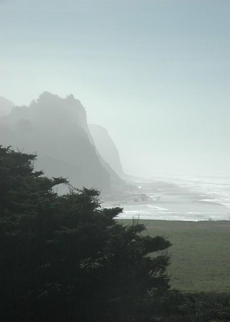 Ocean Mist Beach Hotel Reviews