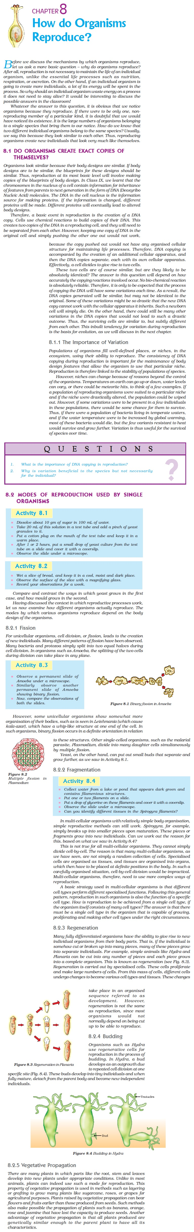 NCERT Class X Science Chapter 8 - How do Organisms Reproduce?