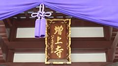 芝 増上寺 初詣