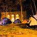 Small photo of Occupy