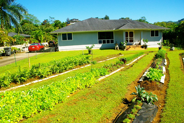 guy higas home garden