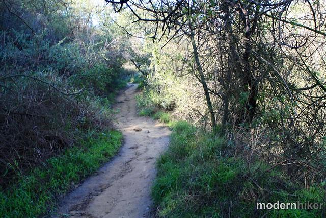 Temescal Canyon to Skull Rock 20
