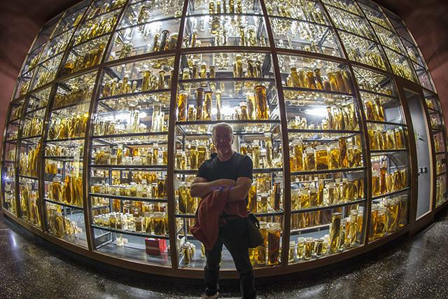 Robert in Museum für Naturkunde