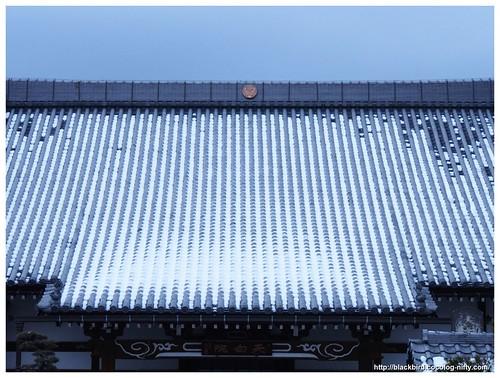 Roof snow #02
