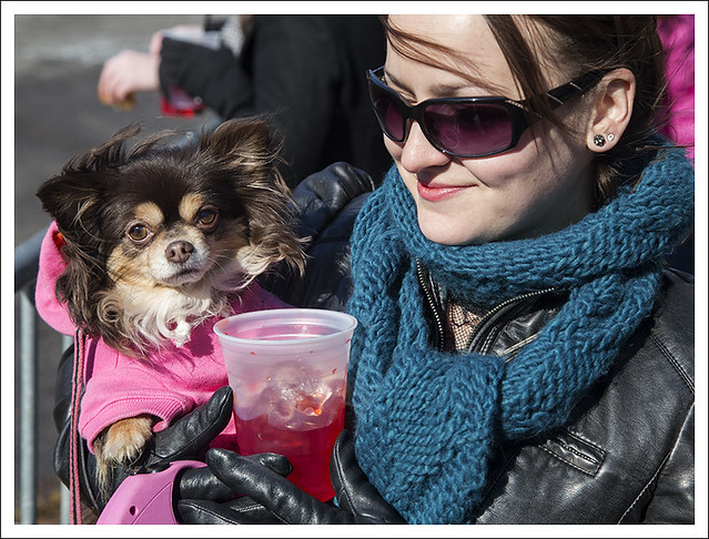 Soulard Pet Parade 2013-02-03 15
