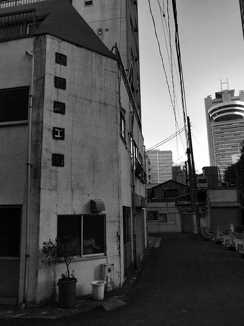 小石川(Koishikawa)