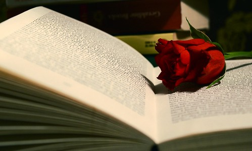 books and roses by red-photo
