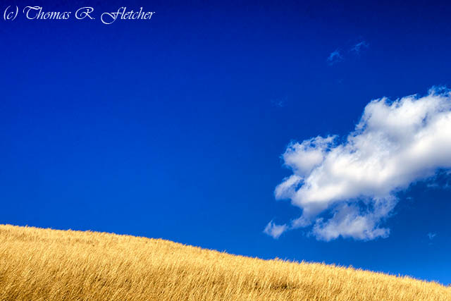 Golden Hill, Sky and Cloud
