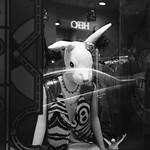Pretty Hunny Bunny