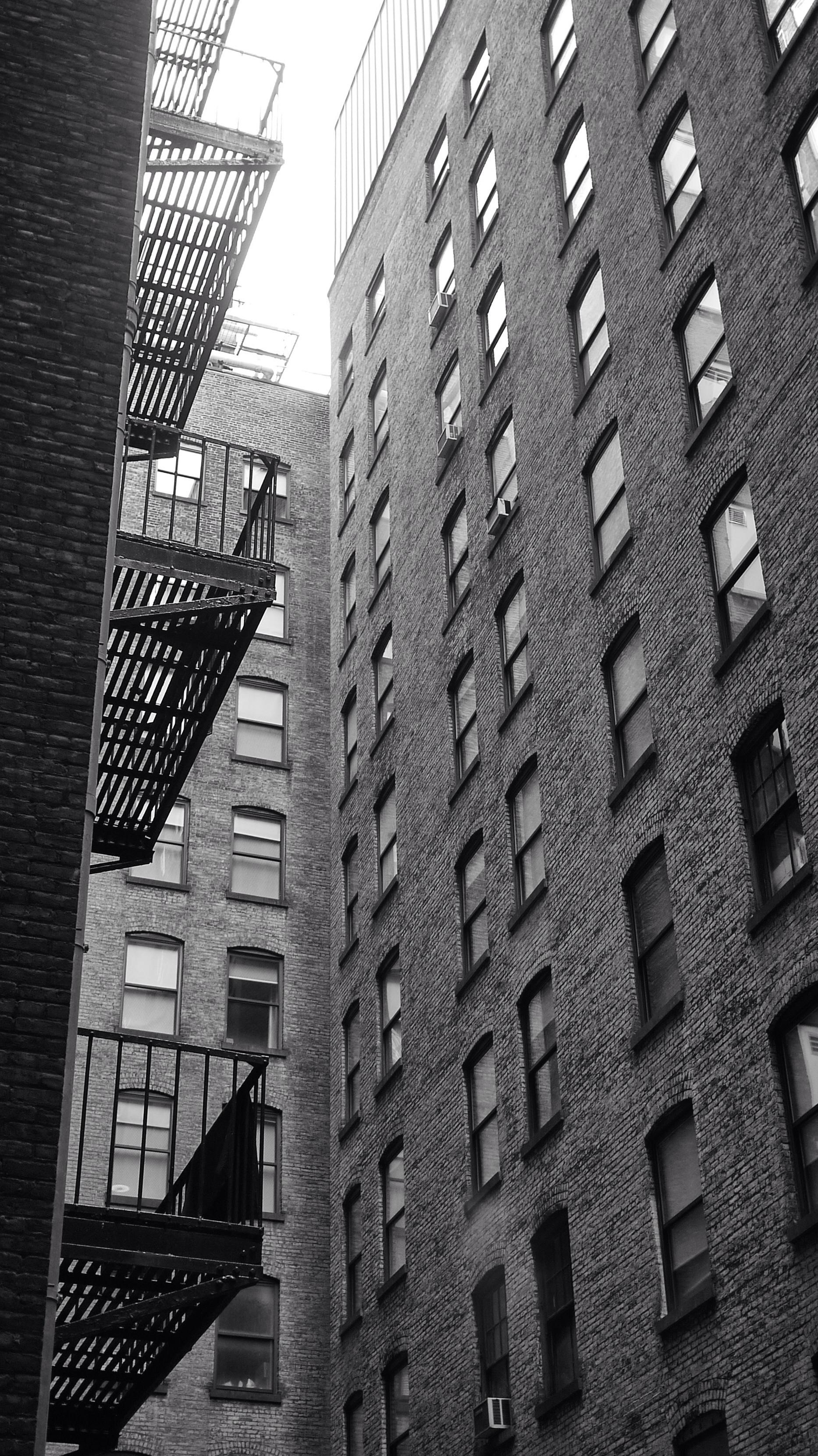 Maze of windows #walkingtoworktoday