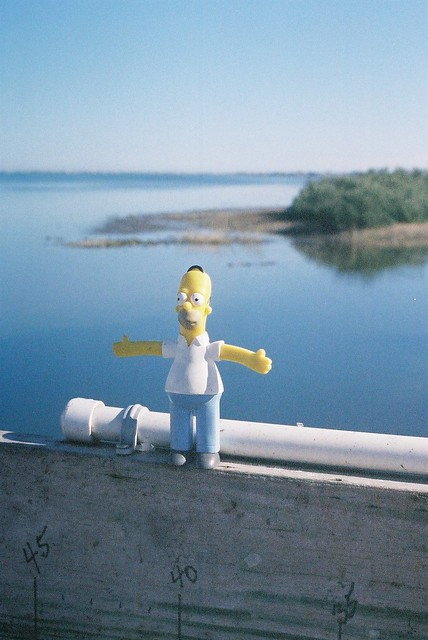 Homers Vacation