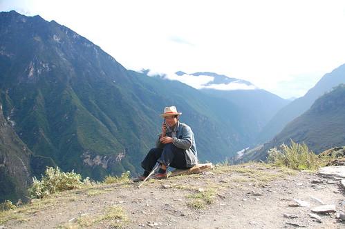 Naxi shepherd