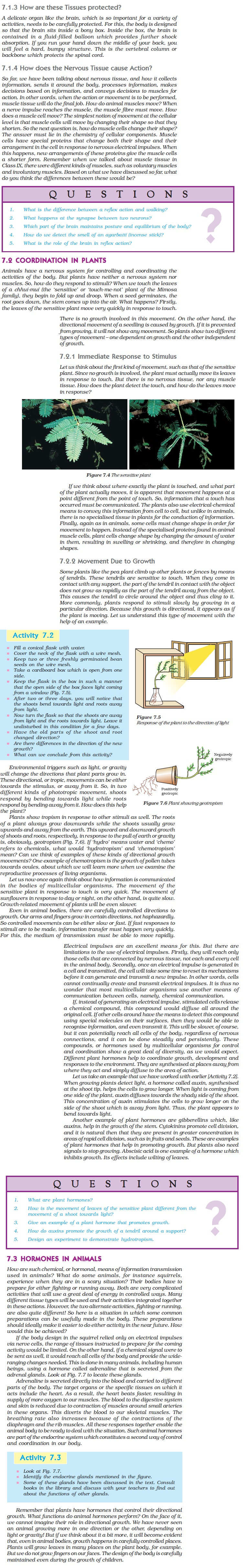 NCERT Class X Science Chapter 7 - Control and Coordination