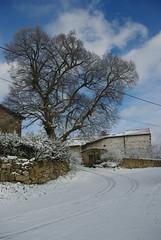 IMGP2759 - Photo of Saint-Julien-de-Coppel