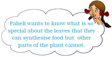 NCERT Class VII Science Chapter 1 Nutrition in Plants
