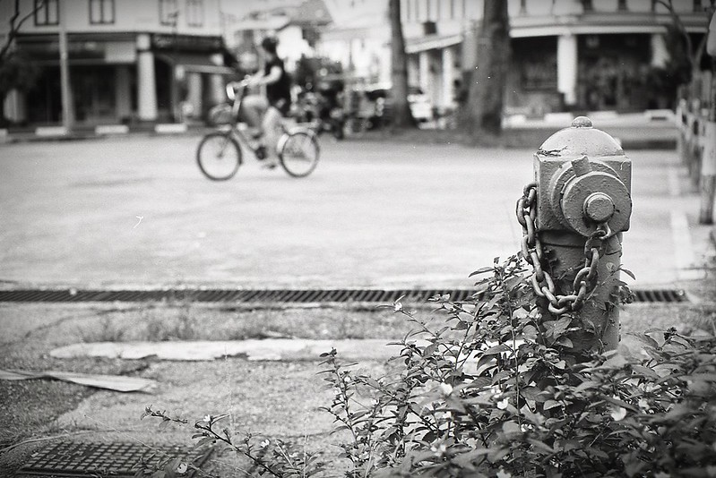 Street shoots