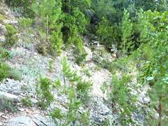 Chemin de la Montagne : après le Valdu Grande, la traversée du ruisseau suivant (non porté sur IGN)