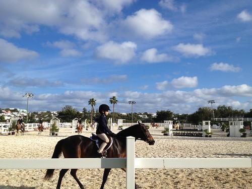Horse Show Bermuda