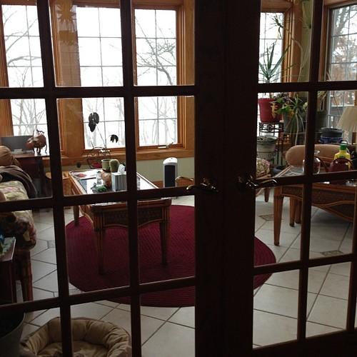Day 29- symmetry. Sunroom doors. #takentodayjanuary