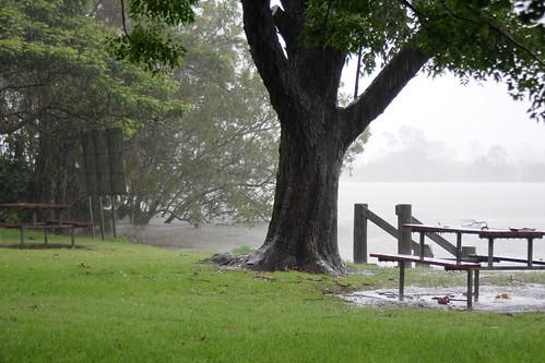 IMG 8485 Urunga in Deluge