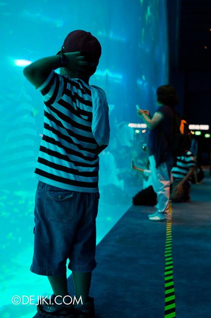 S.E.A. Aquarium - Crossing The Line