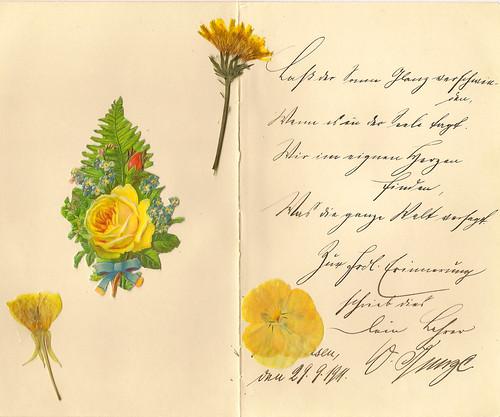Poesiealbum Sütterlinschrift Erinnerung Lass der Sonne Glanz verschwinden Goethe Faust