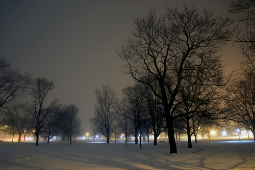 park old longexposure winter usa moon white mist snow black cold tree green ice silhouette night clouds dark landscape outside town photo interesting nikon flickr image shots outdoor snowy connecticut country shoreline foggy picture newengland ct places historical moonlight nightshots scenes gundersen guilford conn nikoncamera d600 guilfordgreen towngreen nikond600 connecticutscenes bobgundersen robertgundersen pwwinter
