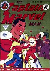 8479129806 510e8ff906 m Poisoned Chalice Part 2: Marvelman Rises