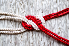 red, knot, rope,