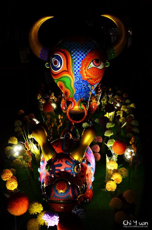 動物派對09.jpg