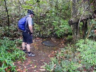 Moss's Well