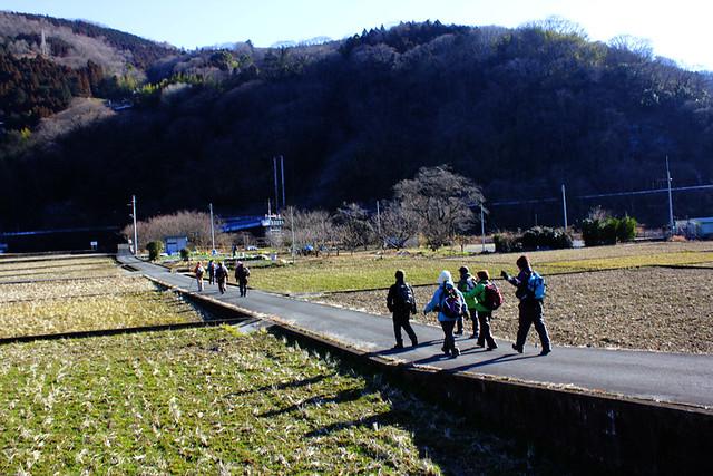 20130127_大野山_0011