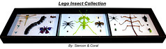 Lego Insect Collection (Panorama)
