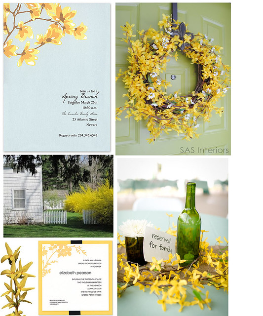 Forsythia as Easter Decor
