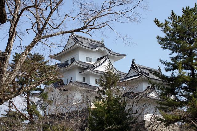 Iga Castle