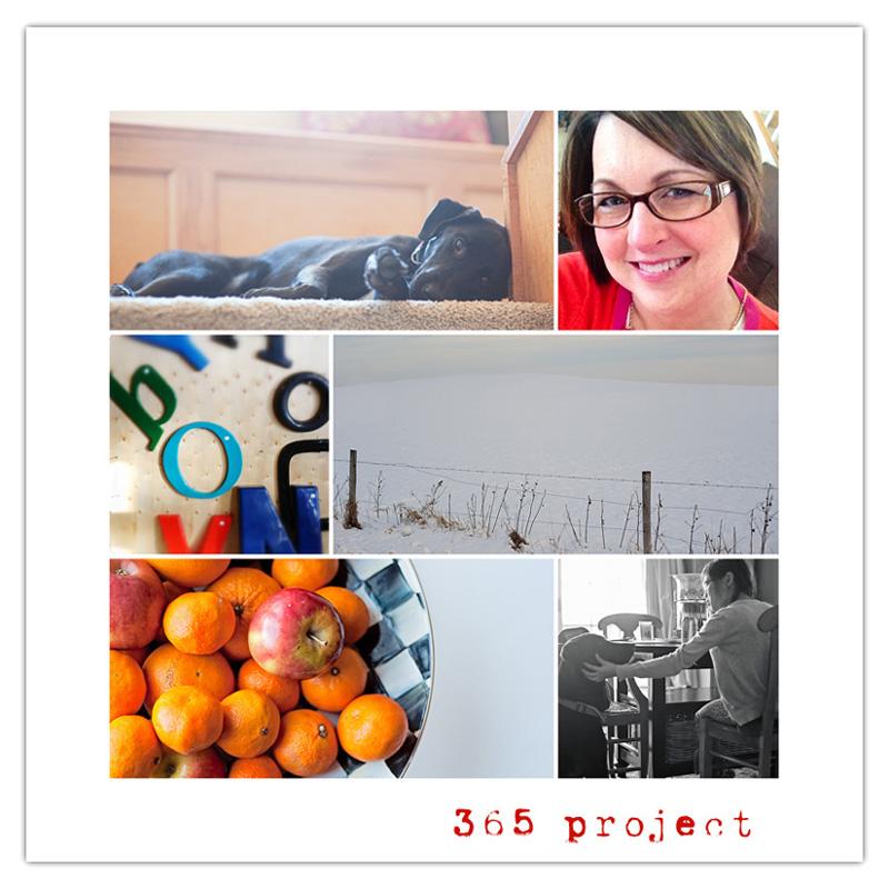 365 project Jan 11