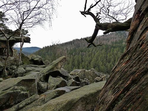 Čertova stěna a divokým řečištěm Čertových proudů
